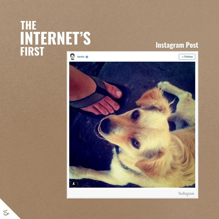 The remarkable debuts!  #TheInternet #TheFirstonInternet #Innovation #Idea #CompuBrain